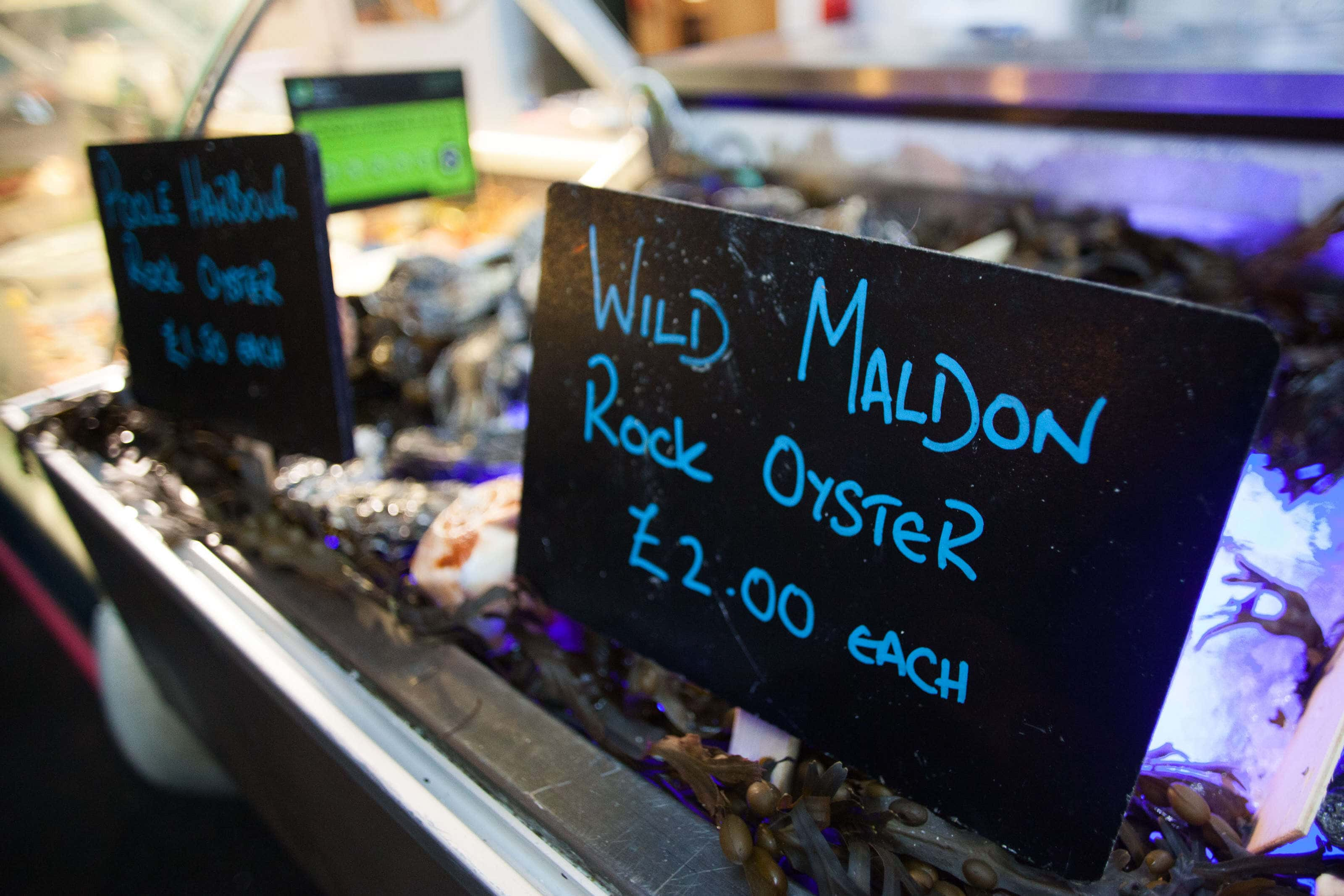 A sign for wild molden rock oysters